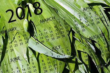 kalender-koestlichkeit